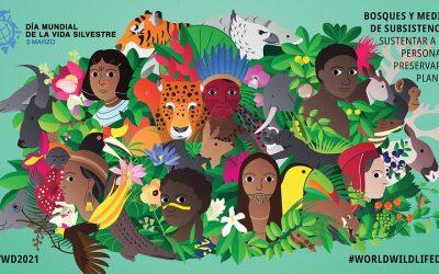 3 de Marzo – Día Mundial de la Vida Silvestre