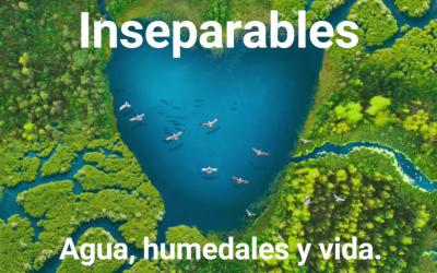 2 de Febrero, Dia Mundial de los Humedales