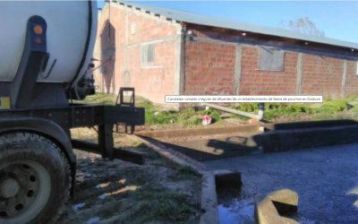 Constatan volcado irregular de efluentes de un establecimiento de faena de porcinos en Dolavon