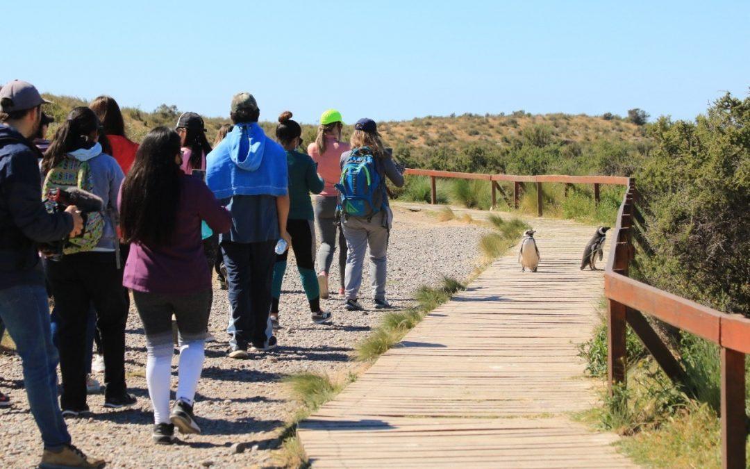"""Una veintena de docentes recorrieron Punta Tombo en el marco de la capacitación """"Educación, valoración y conservación de nuestros recursos naturales"""""""