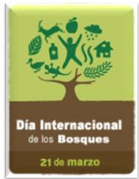 21 de Marzo – Día Internacional de los bosques